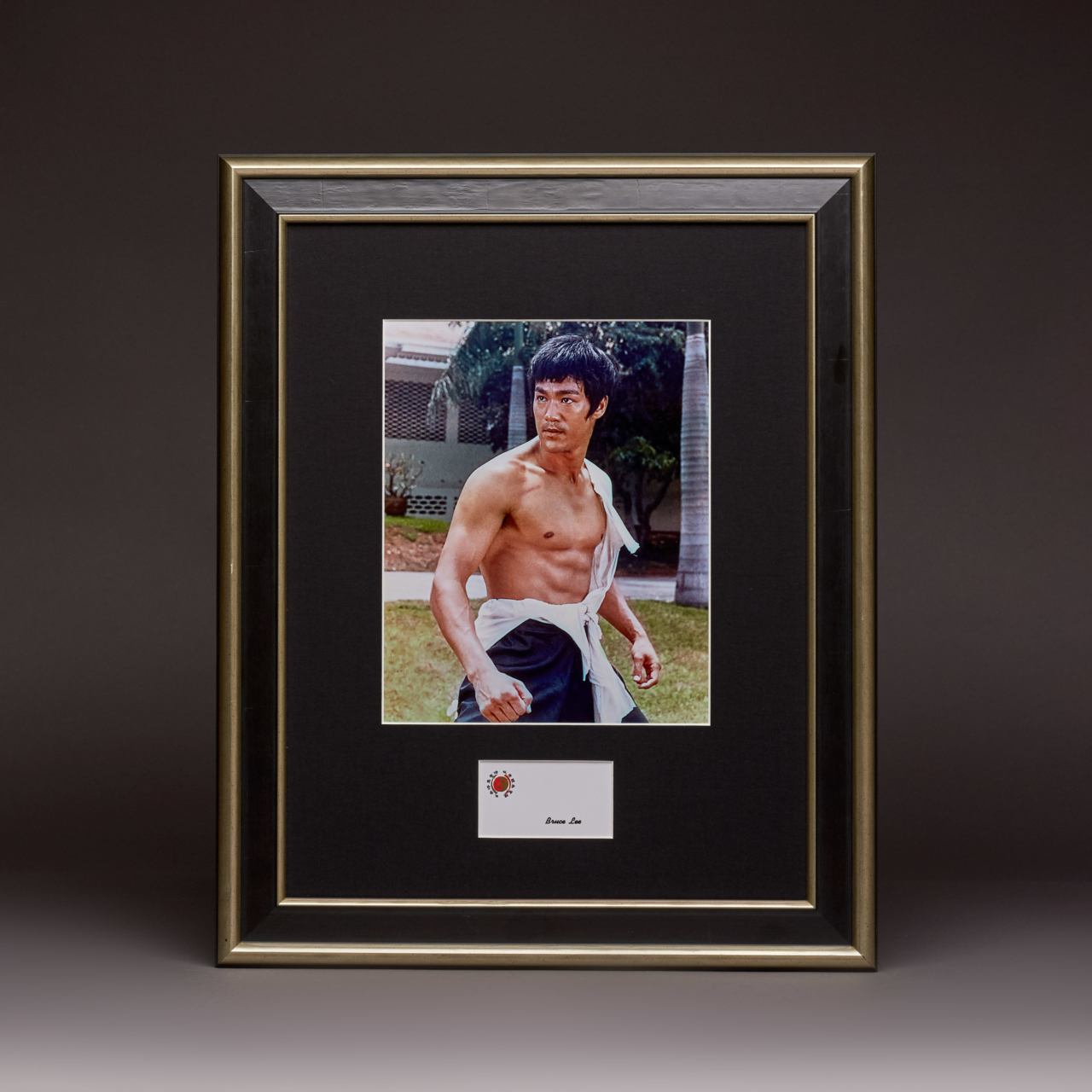 Bruce Lee Master Series Limited Edition 1 The Legend Begins Kudos Catalogue Shoot2557